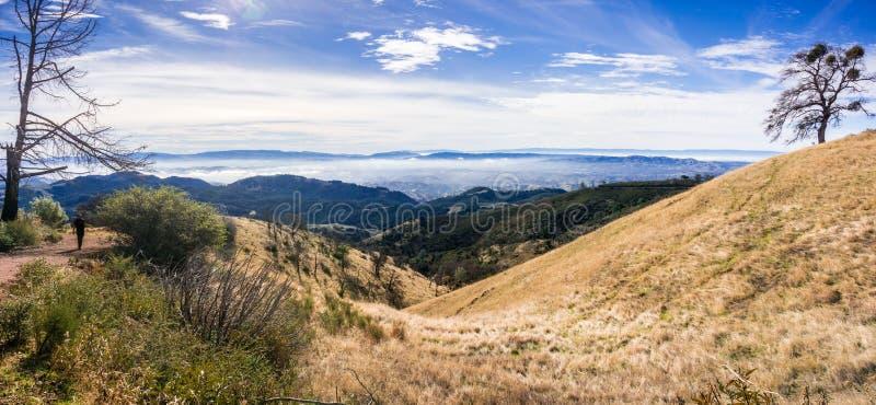 Névoa da manhã que cobre os montes e os vales que cercam Mt Diablo State Park fotos de stock