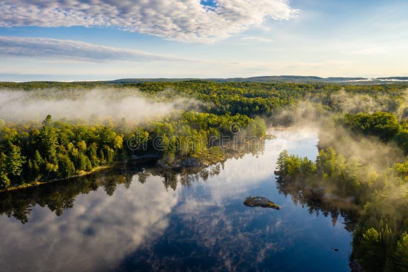 N?voa da manh? sobre uma floresta e um lago fotografia de stock royalty free