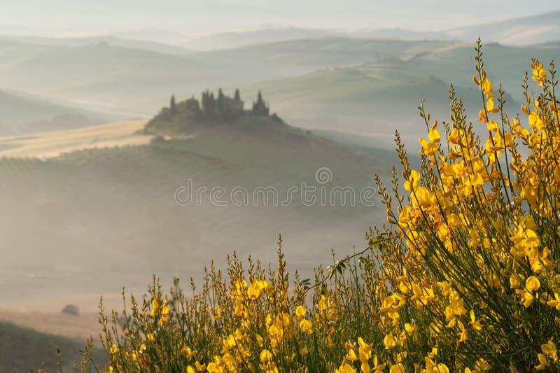 Névoa de Tuscan no campo rústico na luz do sol, Itália fotos de stock royalty free
