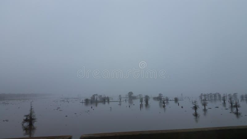 Névoa delével no rio do atchafalya imagens de stock