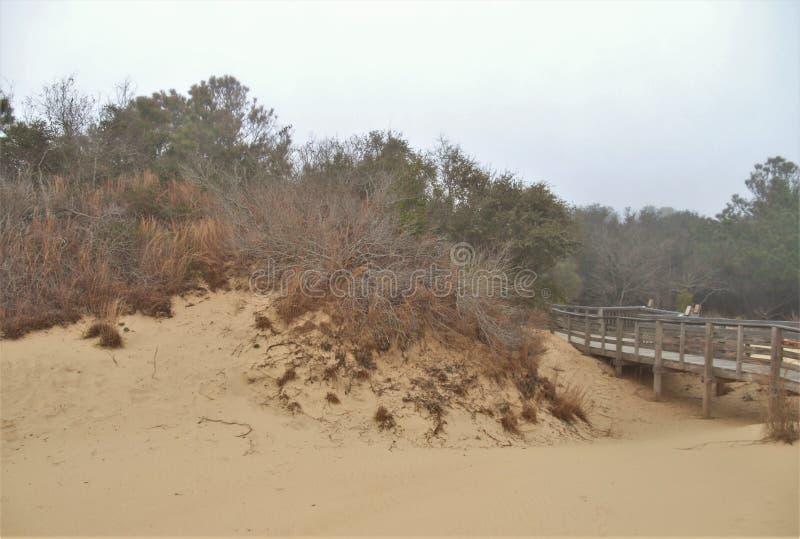 Névoa densa sobre o ` s Ridge State Park do jóquei imagens de stock