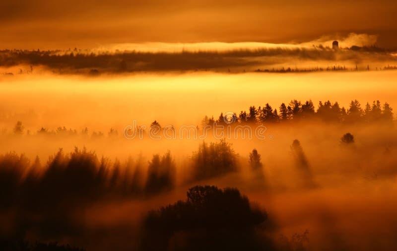 Névoa do nascer do sol foto de stock