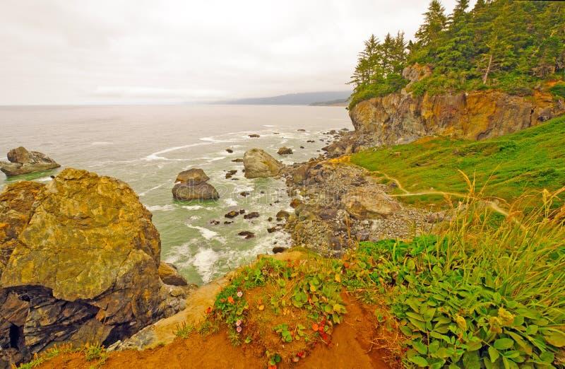 Névoa e rochas litorais na costa de Califórnia imagem de stock royalty free