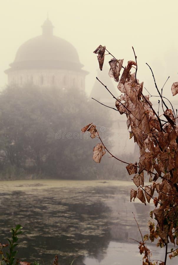 A névoa místico sobre a água