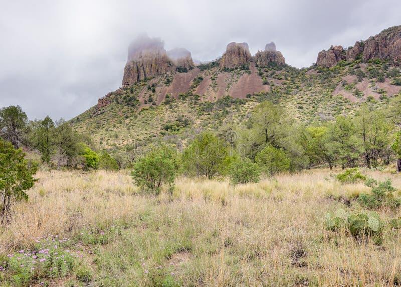 Névoa na casa grandioso, parque nacional de curvatura grande, TX fotos de stock