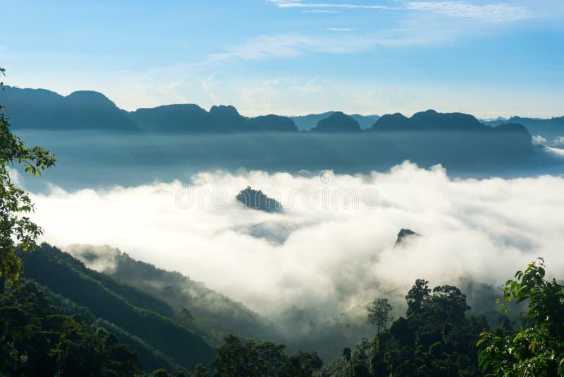 A névoa na manhã fotografia de stock royalty free