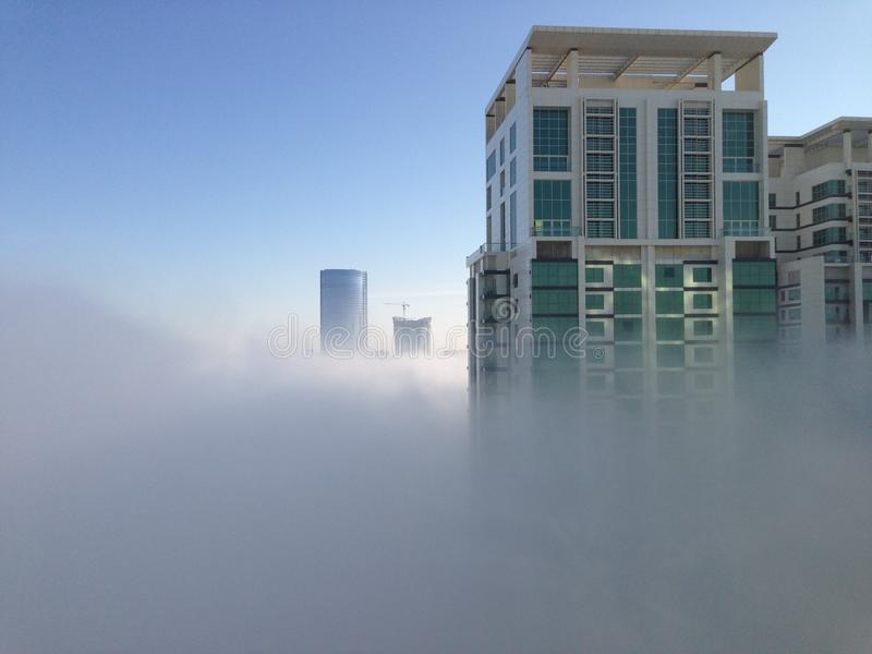 névoa na manhã fotografia de stock