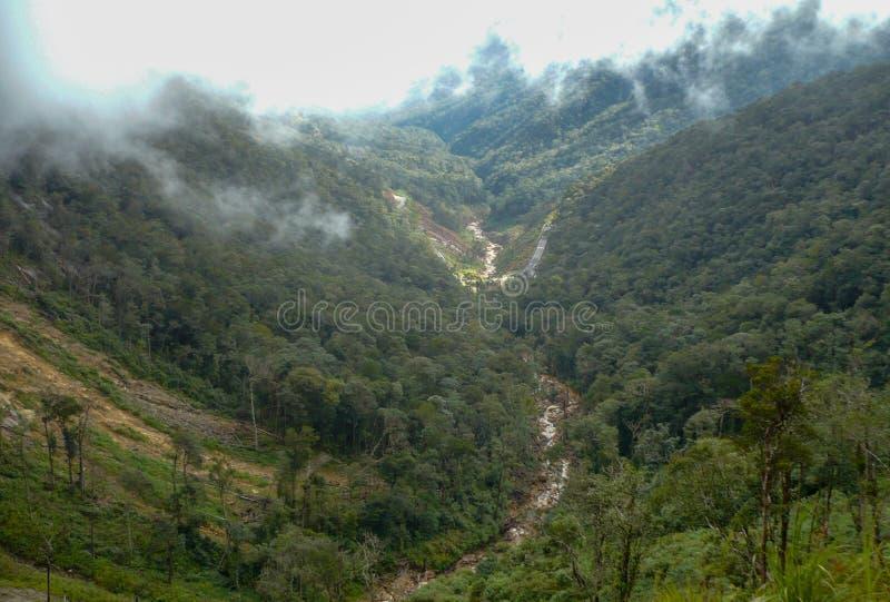 Névoa nas montanhas de Vietname fotos de stock royalty free