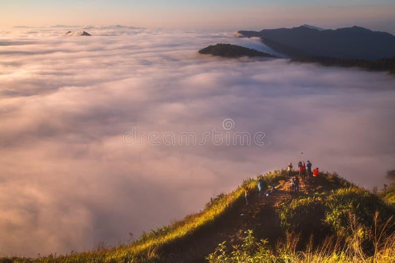 A névoa no fá do qui de Phu na manhã Chiang Rai Tailândia imagens de stock royalty free