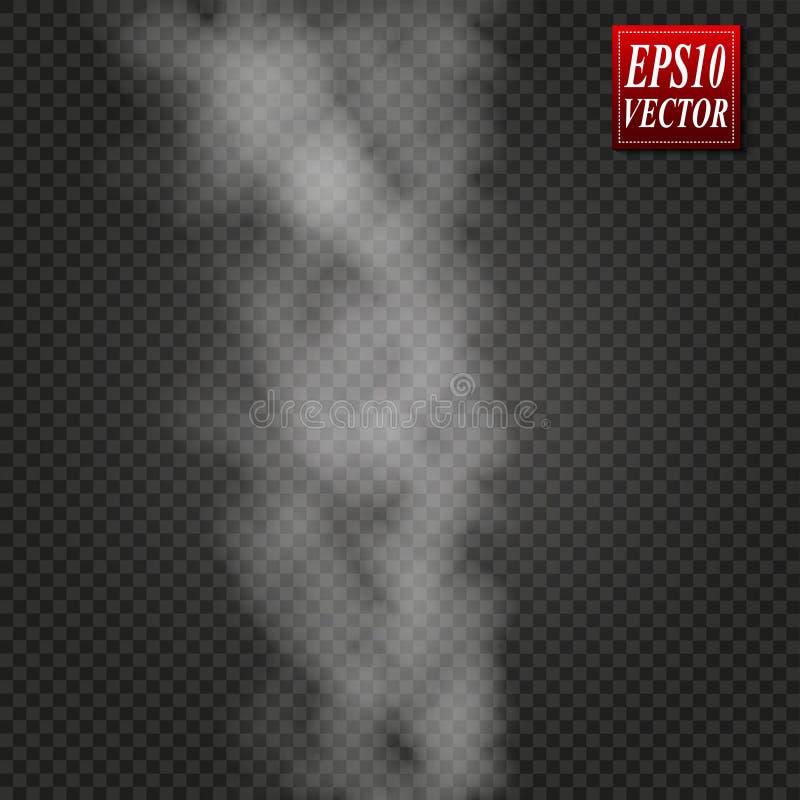 Névoa ou efeito especial transparente isolado fumo Opacidade branca do vetor, névoa ou fundo da poluição atmosférica Ilustração d ilustração stock
