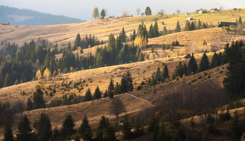 Névoa que cobre as florestas da montanha fotos de stock royalty free