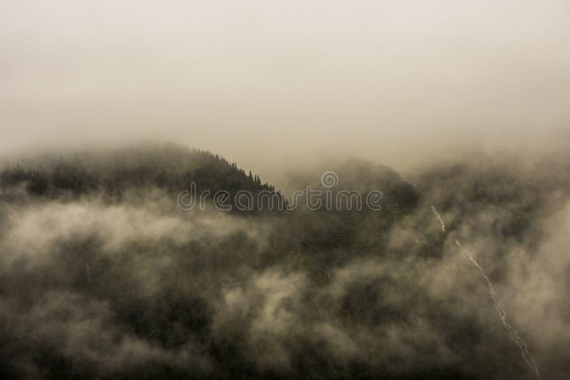 Névoa que cobre as florestas da montanha em preto e branco imagens de stock