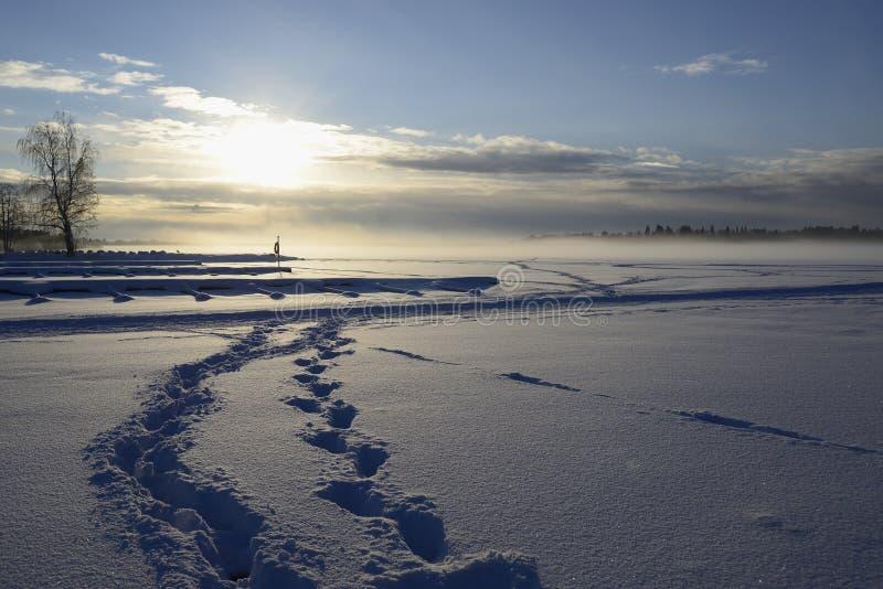 Névoa sobre o lago do inverno em finland imagem de stock