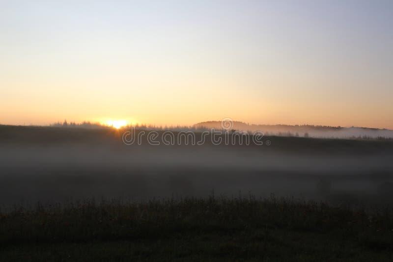 Névoa sobre o prado no amanhecer fotografia de stock royalty free