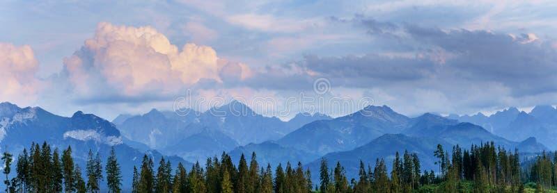 Névoa sobre partes superiores da montanha Carpathians, Ucrânia europa fotos de stock