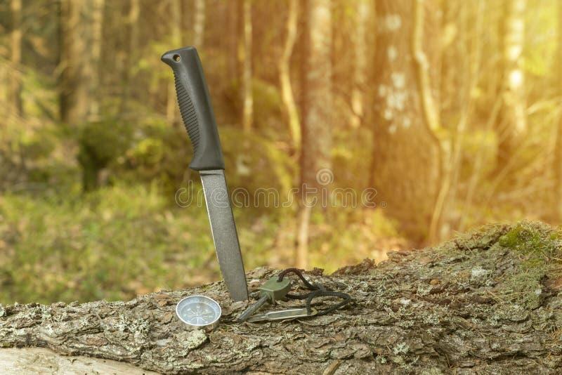 Nóż, kompas i krzemień na fiszorku w lesie, obraz stock