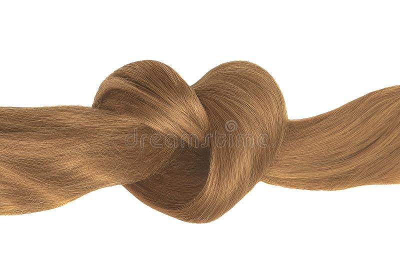 Nó do cabelo de Brown na forma do coração, isolada no branco fotos de stock
