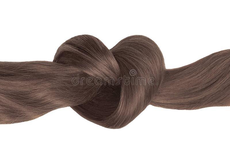Nó do cabelo de Brown na forma do coração, isolada no branco foto de stock royalty free