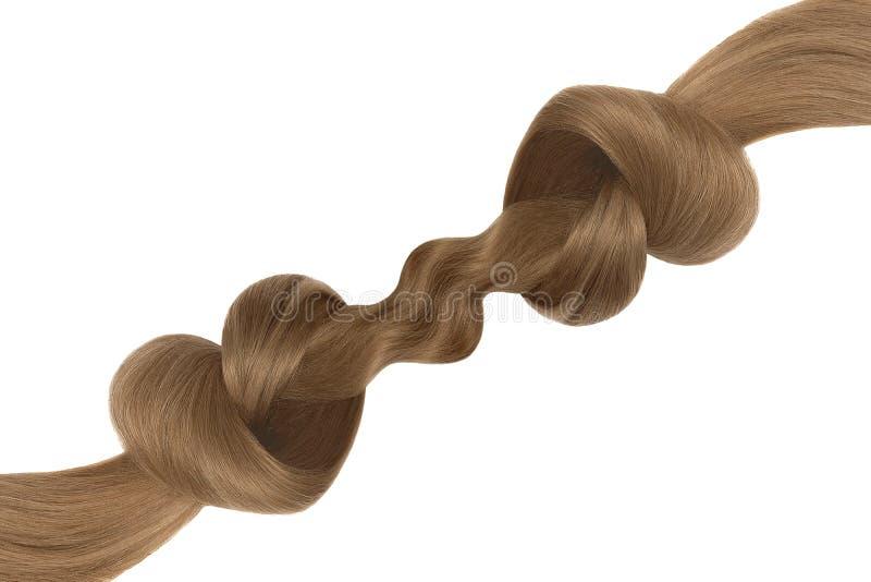 Nó do cabelo de Brown na forma do coração, isolada no fundo branco Conceito do cuidado fotos de stock