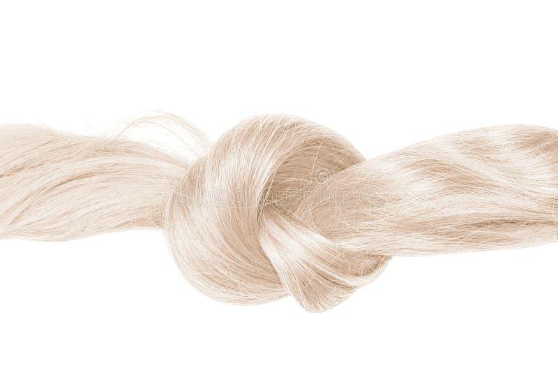 Nó do cabelo louro, isolado no branco imagens de stock royalty free