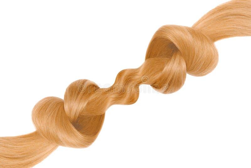 Nó do cabelo louro na forma do coração, isolada no fundo branco Conceito do cuidado imagem de stock