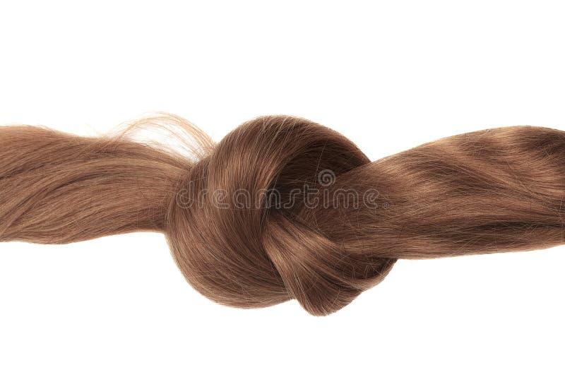 Nó do cabelo marrom, isolado no branco foto de stock royalty free