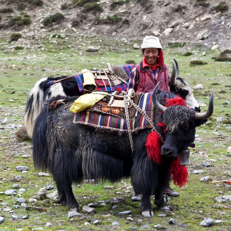 Nómada tibetano foto de stock