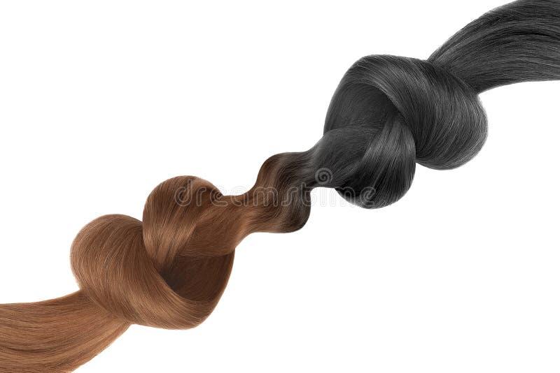 Nós do cabelo na forma do coração, isolada no fundo branco Preto e marrom Conceito do cuidado fotos de stock royalty free