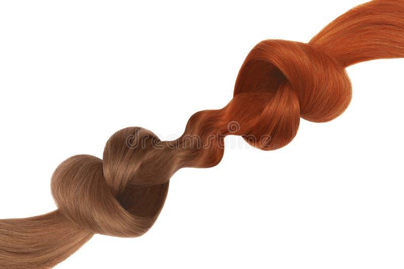 Nós do cabelo na forma do coração, isolada no fundo branco Vermelho e marrom Conceito do cuidado foto de stock royalty free