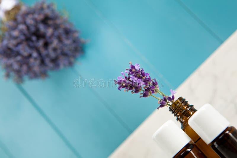Nödvändig olja av lavendel fotografering för bildbyråer