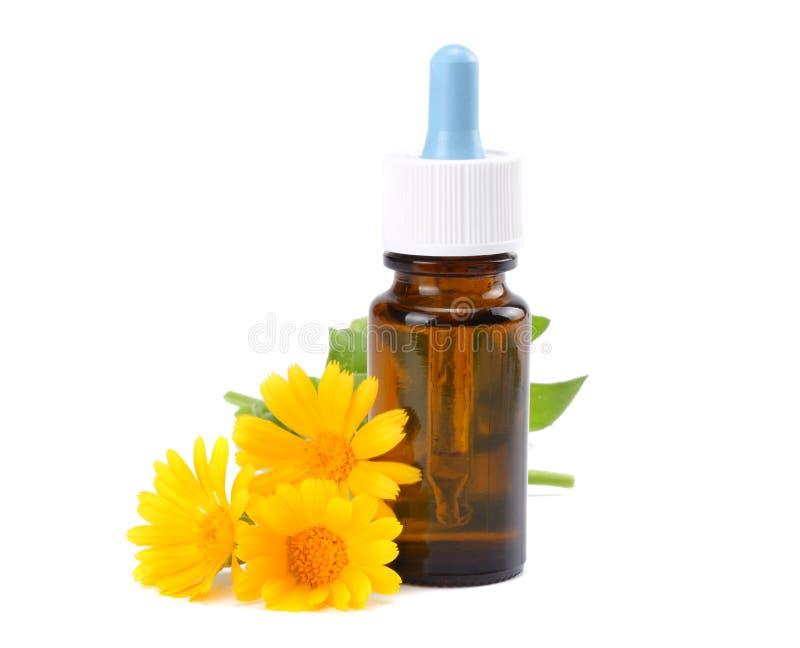 nödvändig olja för aromatherapy med ringblommablommor som isoleras på vit bakgrund royaltyfri foto