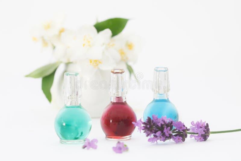Nödvändig olja för lavendel i den lilla flaskan, med nya lavendel- och jasminblommor royaltyfri fotografi