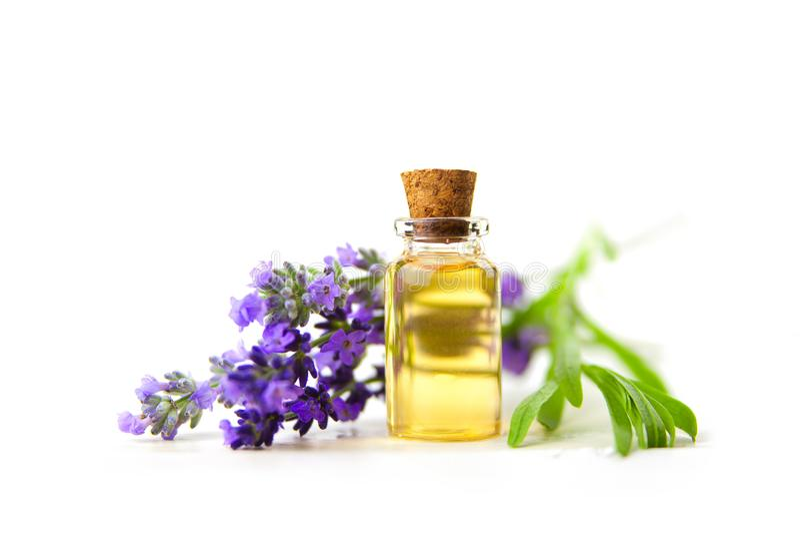 Nödvändig olja för lavendel i härlig flaska på vit bakgrund fotografering för bildbyråer