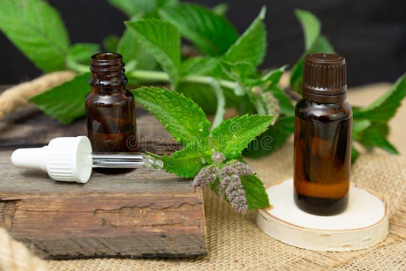 Nödvändig olja för naturlig pepparmint i en glasflaska med sidor för ny mintkaramell på träbakgrund arkivfoto