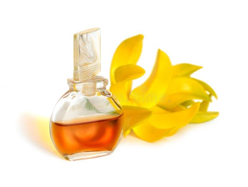 Nödvändig olja för Ylang-Ylang med blommor arkivfoton