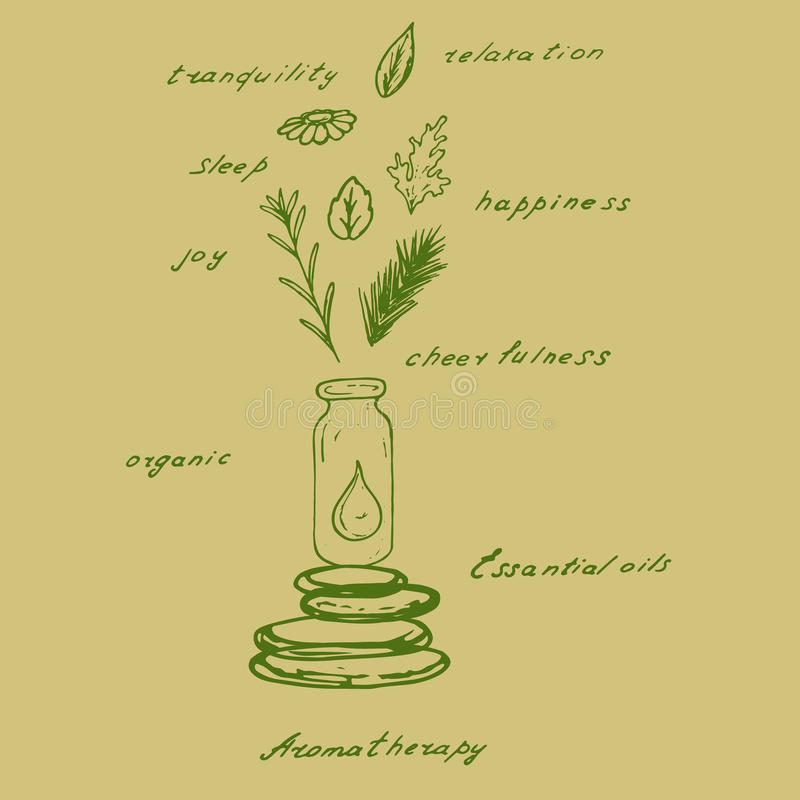 Nödvändig olja från organiska växter arkivfoto