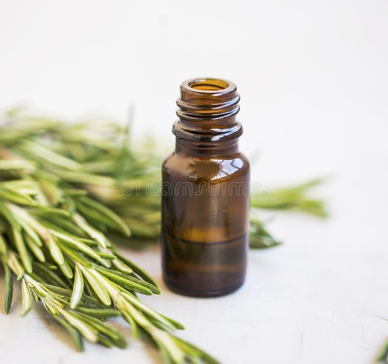 Nödvändig olje- flaska för växt- grön rosmarinört, naturlig aromath royaltyfria foton