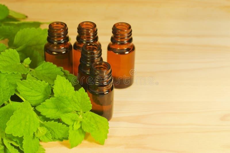 Nödvändiga oljor i glasflaskorna fotografering för bildbyråer