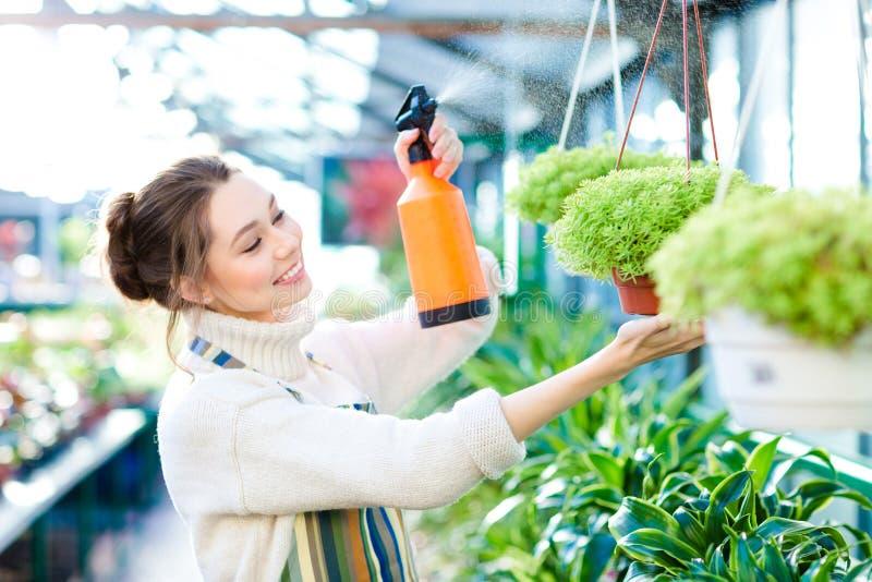 Nöjd nätt trädgårdsmästare för ung kvinna som besprutar blommor arkivbild