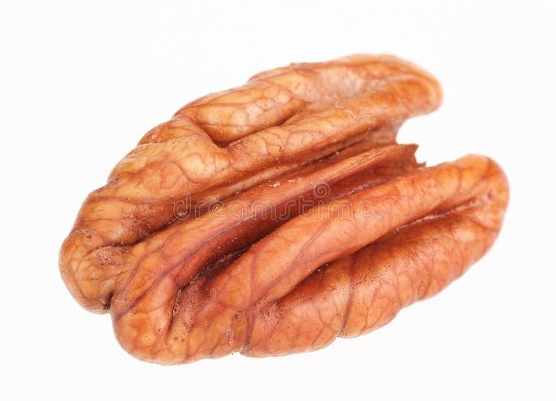 Núcleo da porca de Pecan imagem de stock