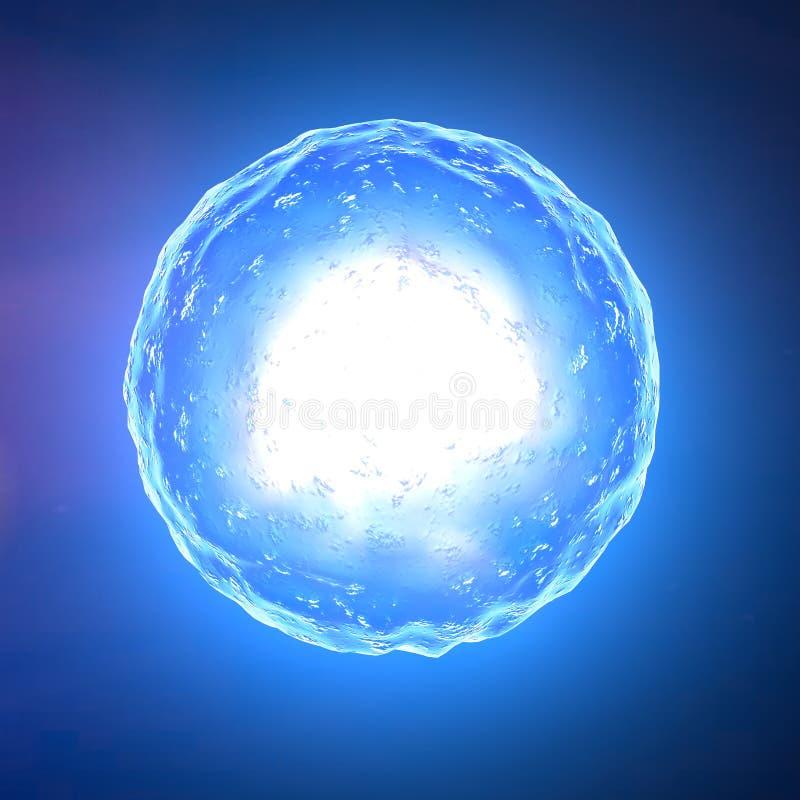 Núcleo de pilha, óvulo, fecundação ilustração stock