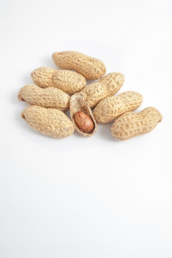 Núcleo del cacahuete con los shelles en blanco imagenes de archivo