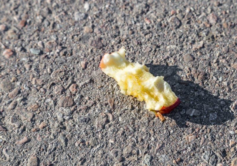 Núcleo rejeitado da maçã imagem de stock