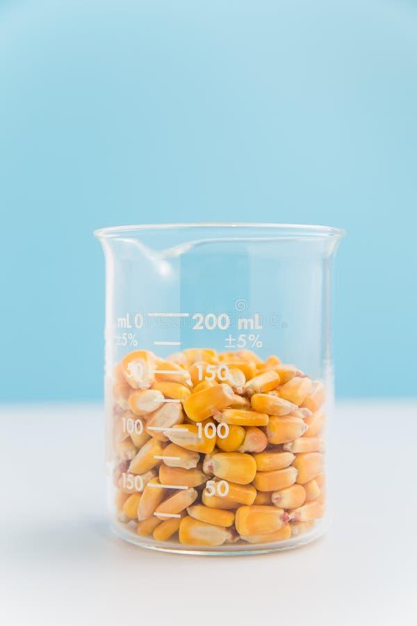 Núcleos de milho em uma taça no azul fotografia de stock