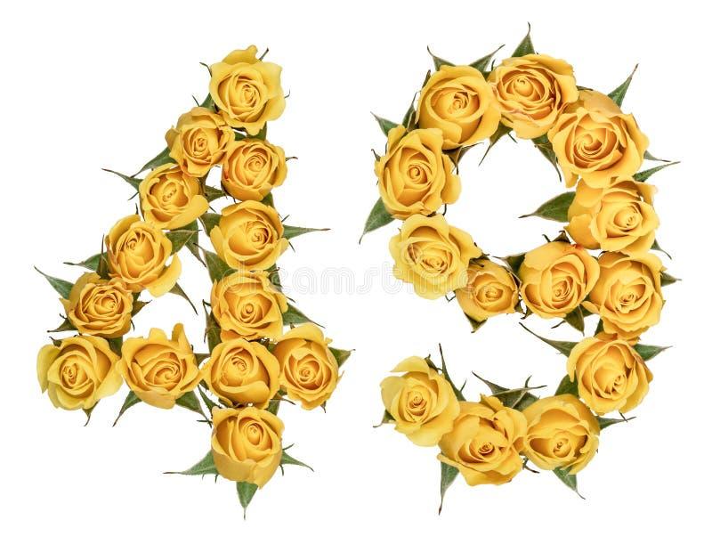 Número árabe 49, cuarenta y nueve, de las flores amarillas de la rosa, aislador fotos de archivo libres de regalías