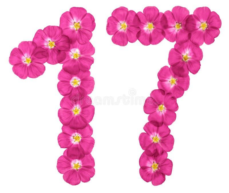 Número árabe 17, diecisiete, de las flores rosadas del lino, aisladas en el fondo blanco imagen de archivo
