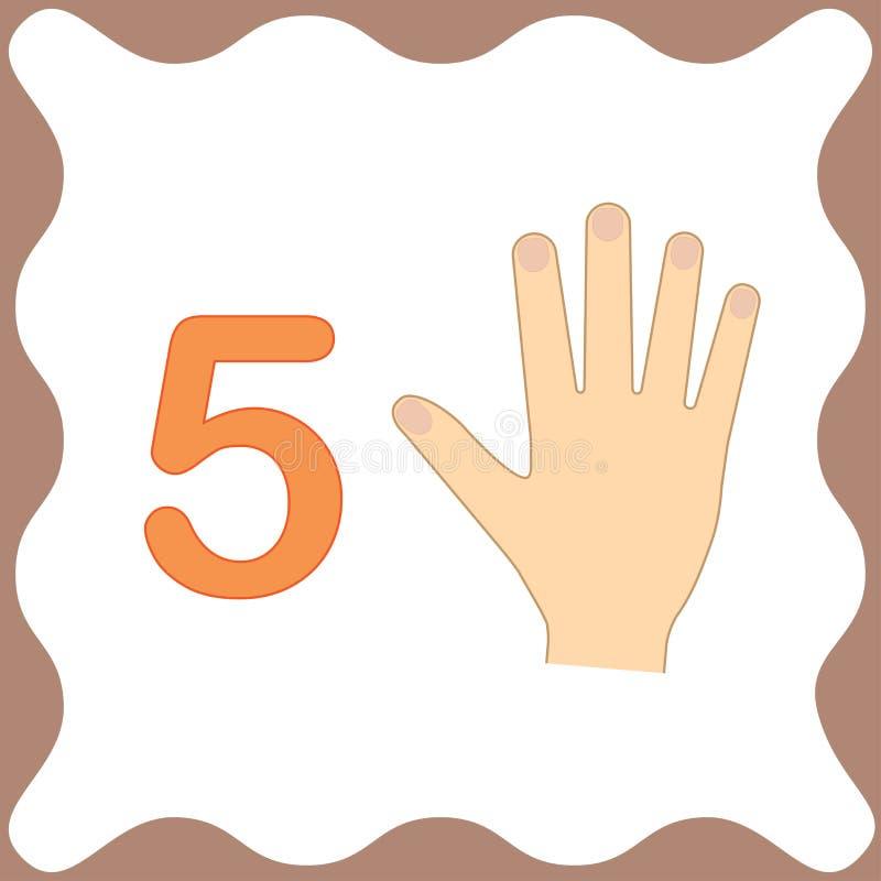 Número 5 cinco, cartão educacional, aprendendo a contagem com dedos ilustração stock