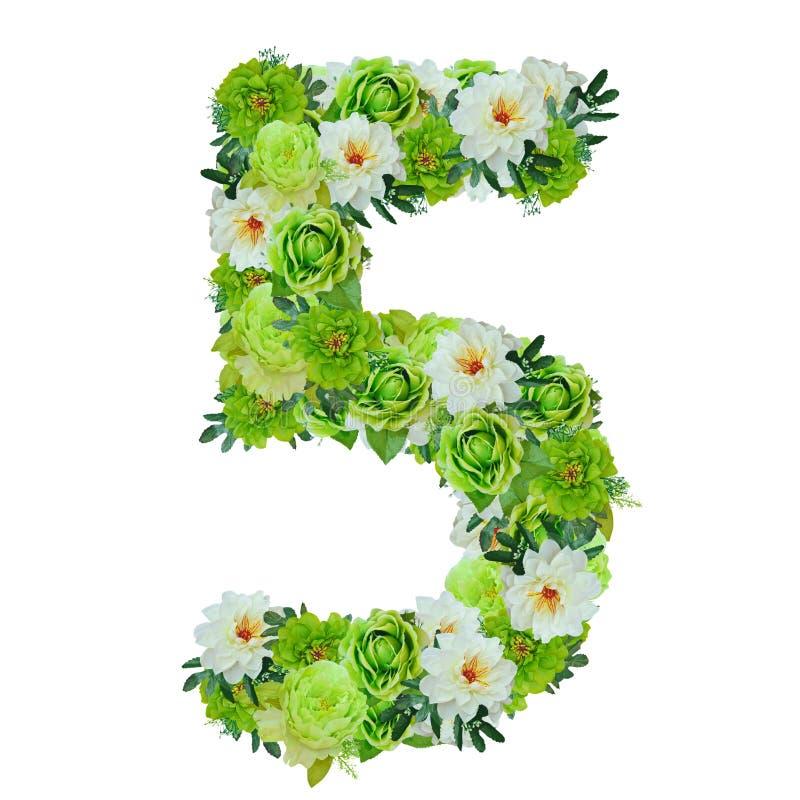Número 5 das flores verdes e brancas isoladas no branco ilustração royalty free