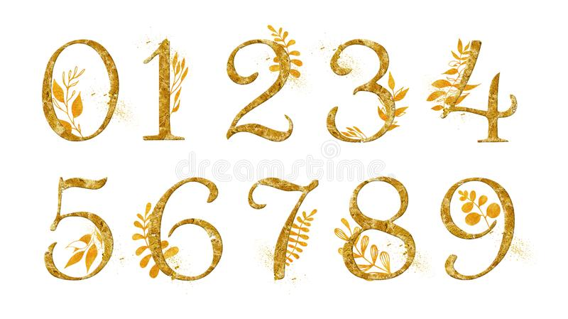 Número de oro fijado con la decoración floral del oro La colección para casarse invita a la decoración otras ideas del concepto stock de ilustración