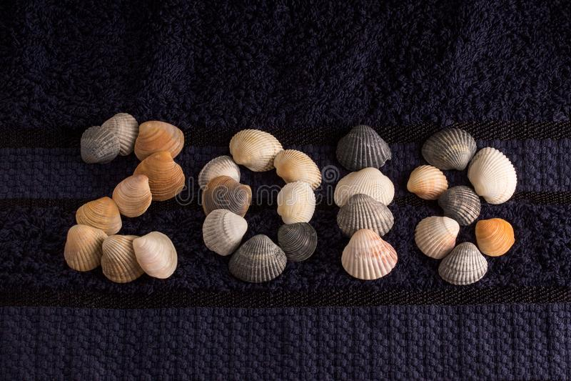 Número dos miles y dieciocho presentados de cáscaras del mar imagen de archivo